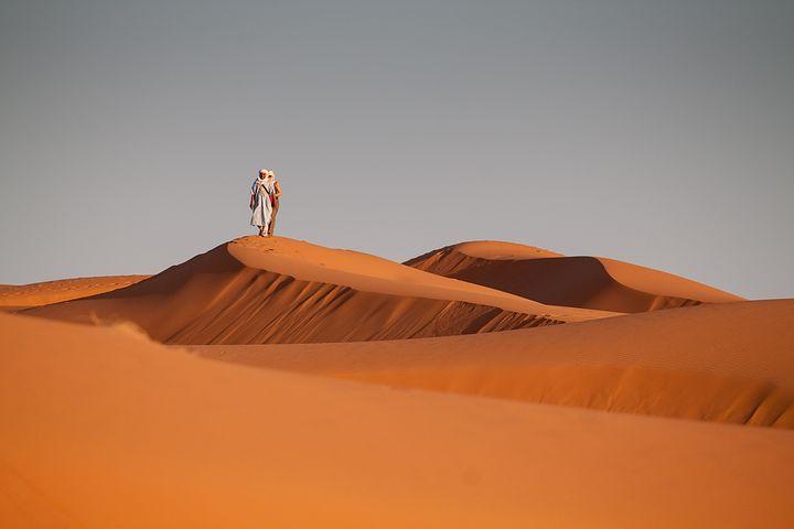 faire un safari à abu dhabi